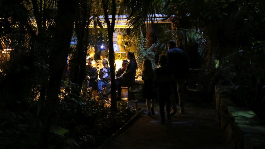 noc w palmiarni koncert szkoła muzyczna t.burton 003